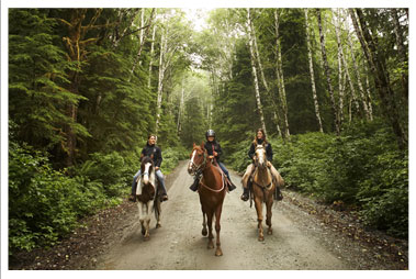 Horseback Riding Trails in WI